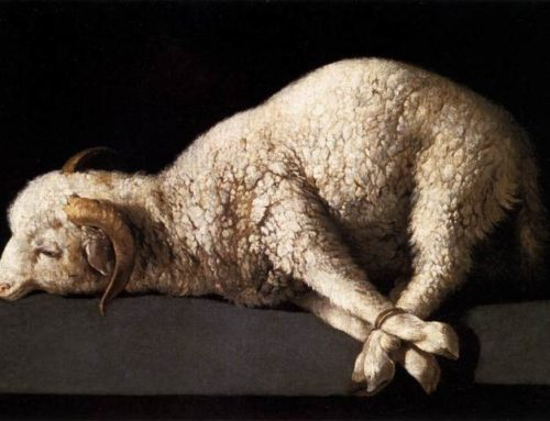 The Lamb in Early Christian Symbolism