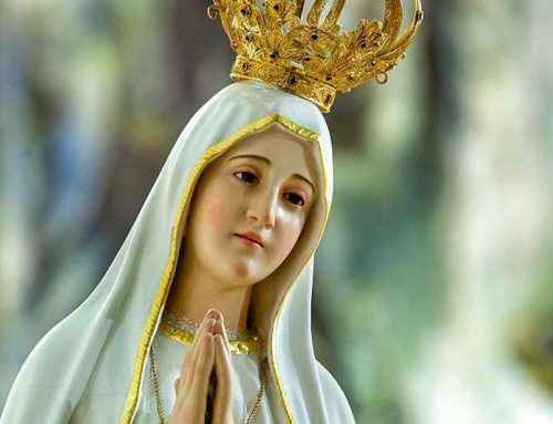 """Fatima"" film tells true story of children who received Marian apparitions"
